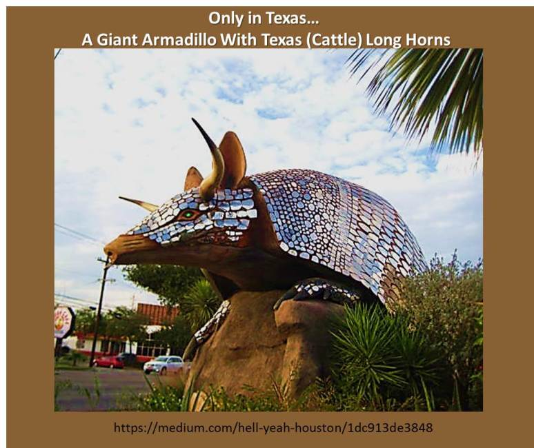 Texas sculpture of an Armadillo in front of Goode Company restaurant:  In Texas, It's Always Bigger and Better... even if it's an Armadillo!