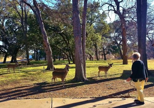 My Step-Mom, Eleanor, Hand Feeding The Deer- Marble Falls, Texas (Horseshoe Bay)