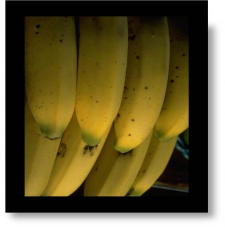 Photo of bananas- Don't Buy Green Bananas: metaphor for life being too short to wait for things to be just right.
