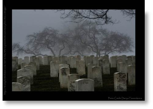 The National Cemetery at the Soldiers Home, by Daniya Tamendarova