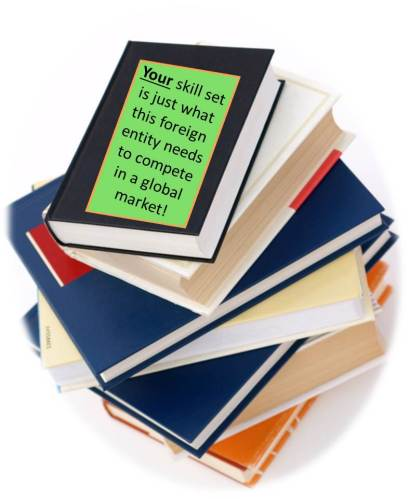 Photo graphic image: Stack of Advice Books for Expat Transition