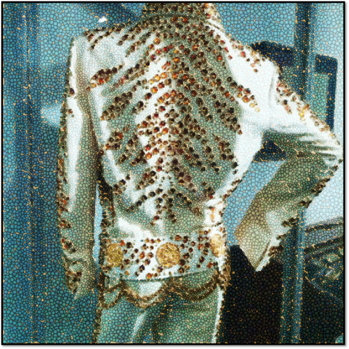 Elvis Presley's early stage costume