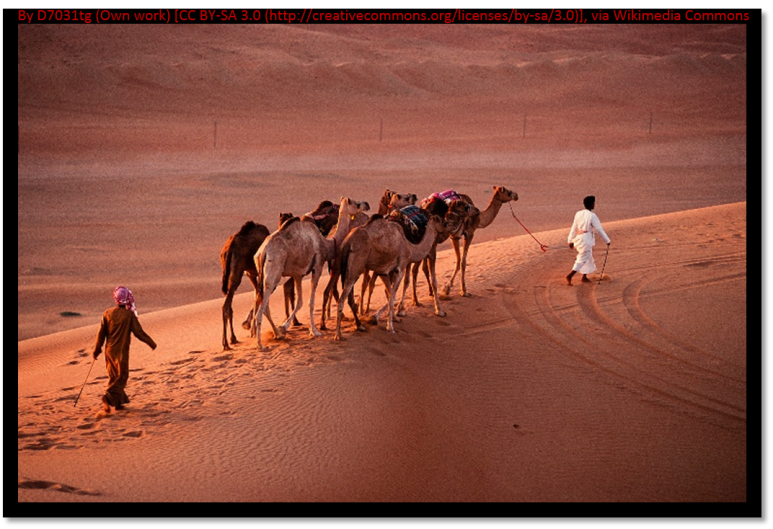 Nomads with camels
